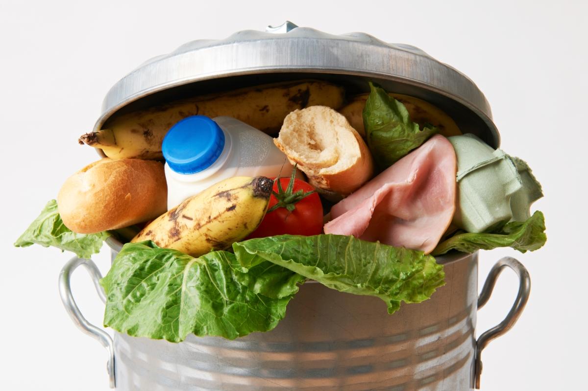 Too good to go: l'app che combatte gli sprechi alimentari