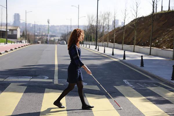 wewalk2.jpg