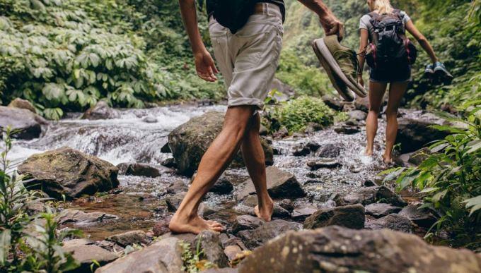 piedi-nudi-bosco.jpg
