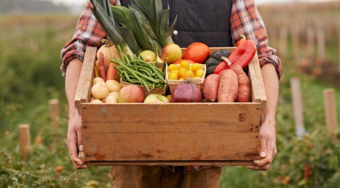 Frutta e verdura del mercato a portata di click
